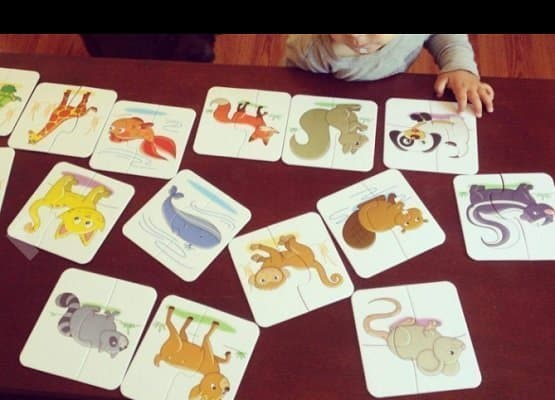 The Learning Journey My First Match It Animal Puzzle