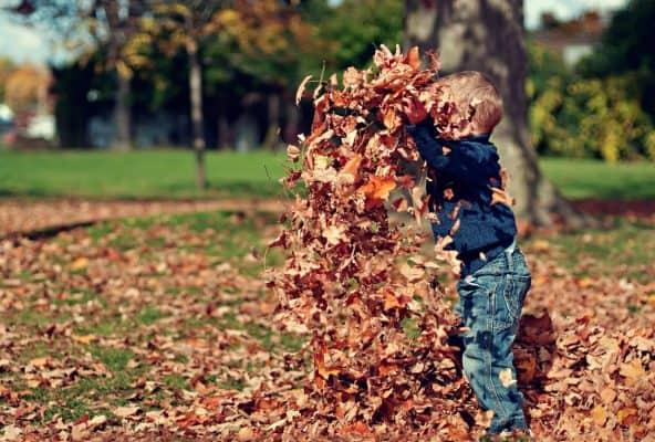 Allow Children to Do Chores for Money