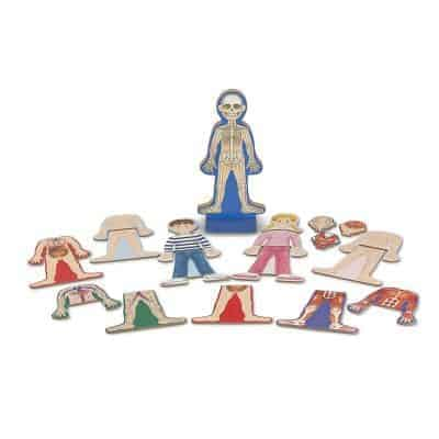 Melissa & Doug Magnetic Anatomy Set