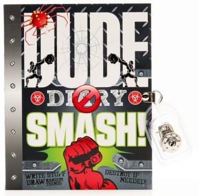 Dude Diary Smash!