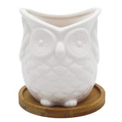 Gemseek White Ceramic Owl Succulent Planter Pot