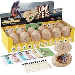 Dino Eggs Kit