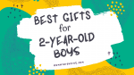 25 Best Gifts and Toys for 2-Year-Old Boys in 2020