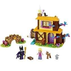 Aurora's Forest Cottage
