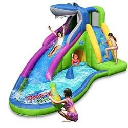 Inflatable Waterslide/Bounce House
