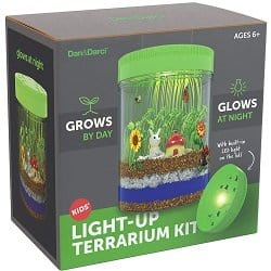 Light-up Terrarium Kit