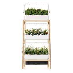 Click & Grow Smart Garden 27