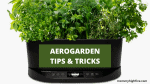 10 Helpful AeroGarden Tips and Tricks