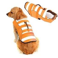 Fragralley Dog Life Jacket