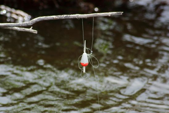 Tangled fishing line with kids