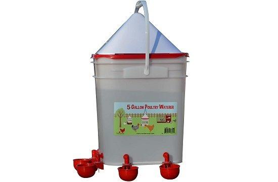 RentACoop Automatic Chicken Waterer